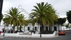 Lanzarote 201802_006