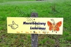 Leckermoor_20170809_04