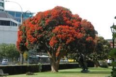 Neuseeland - Wellington