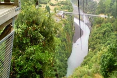 Neuseeland - Flying Fox, Gravity Canyon