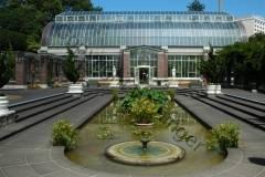 Neuseeland - Winter Gardens, Auckland Domain Park